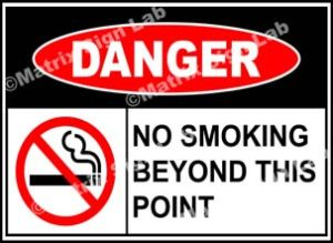 No Smoking Beyond This Point Sign - MSL38532